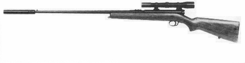 Winchester .22 Rifle